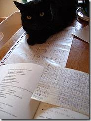 Куронеко вчить японську мову