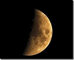 Мушля самітниці - Місяць