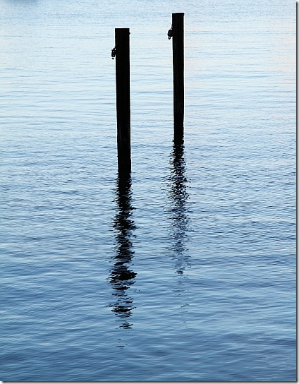 Two wooden poles in the water